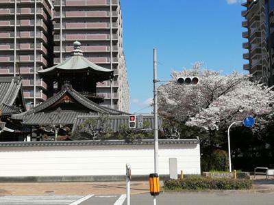 近くの鶴満寺